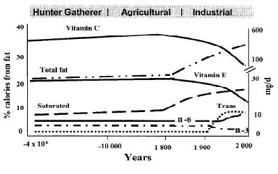 blogs lyon diet heart study